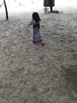 盐洲岛湾仔南海湾沙滩旅游景点攻略图