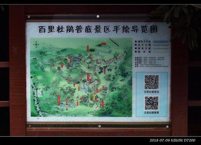 """""""我本人对任何花草也不感兴趣)可那毕竟是国家级5A风景区,而且我这第三次来 贵州 ,就是想把从前..._百里杜鹃风景区""""的评论图片"""