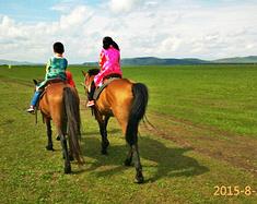 呼伦贝尔大草原令人向往的人间天堂,夏日体验蒙古草原文化之旅