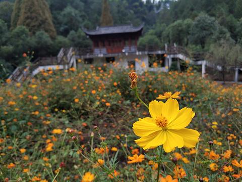 大红岩景区旅游景点图片