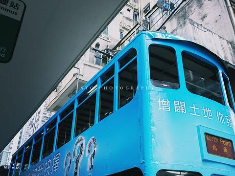 香港叮叮车旅游景点图片