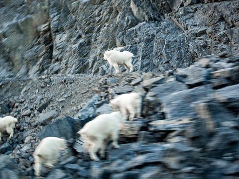 卡斯尔山旅游景点图片