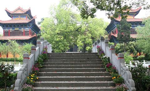 宝通寺站旅游景点攻略图