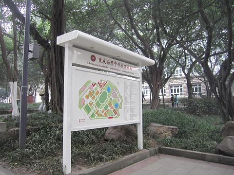 南开中学旅游景点攻略图