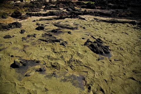 南端角和绿沙海滩