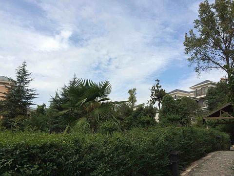 皇姑浴温泉旅游景点攻略图