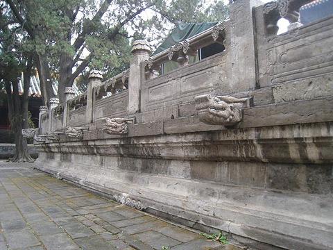 孔庙旅游图片