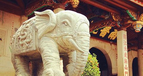 南普陀寺旅游图片
