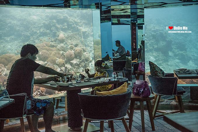海底餐厅图片