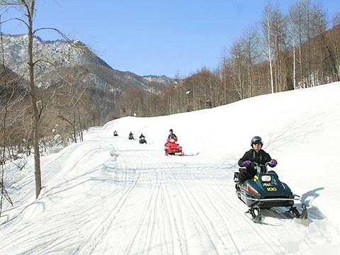 札幌盘溪滑雪场旅游景点图片