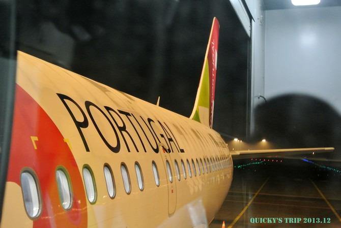 葡萄牙航空图片