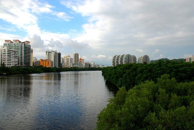 临春河图片