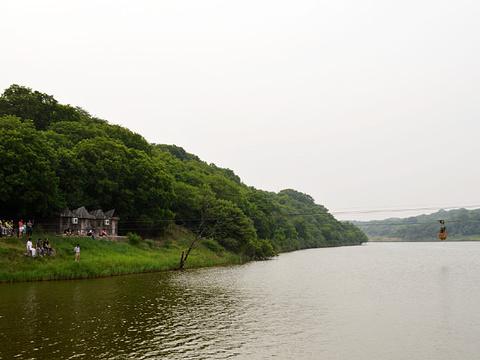 大青沟旅游景点图片