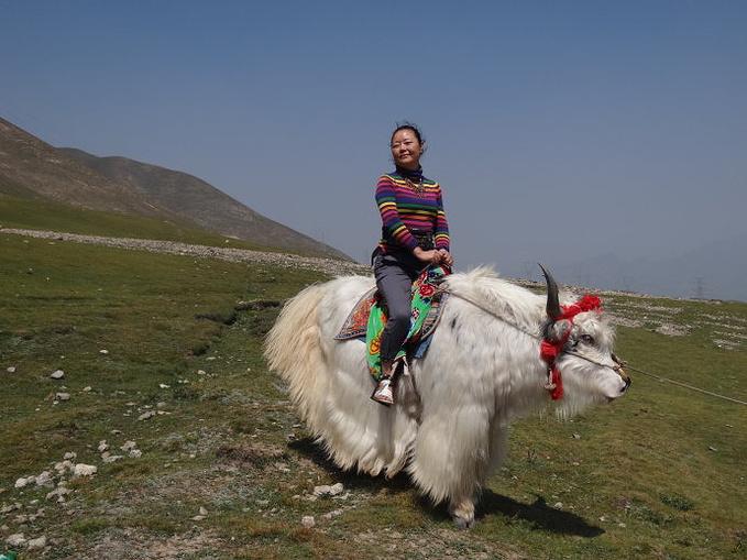 151基地-倒淌河-日月山-湟源峡谷-西宁图片