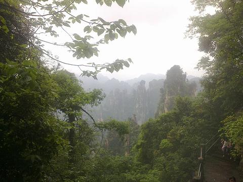 索溪峪旅游景点攻略图