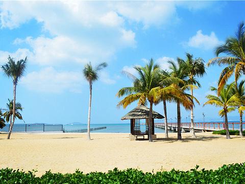 小东海旅游景点图片