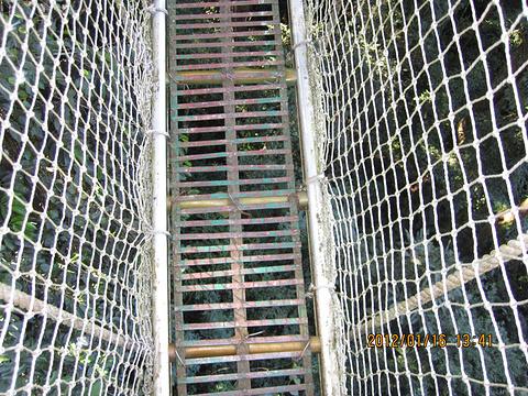 西双版纳热带雨林国家公园望天树景区旅游景点攻略图