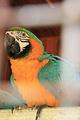 南沙水鸟世界生态公园
