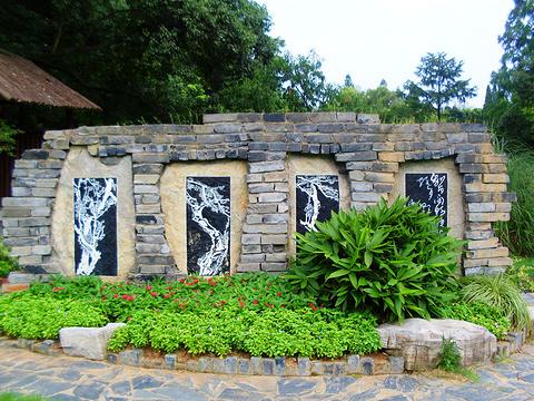梅园旅游景点图片