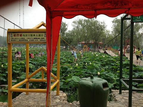 蟹岛绿色生态度假村旅游景点攻略图