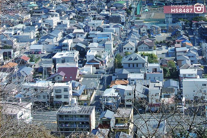 """""""...分钟左右,抵达静岡浅間神社,不得不说这里很值得推荐,有几间小神社组成,更像是一个公园,环境极好_Shizuoka Sengen Jinja Shrine""""的评论图片"""
