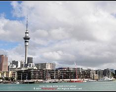 【发现新西兰】速行花园新西兰