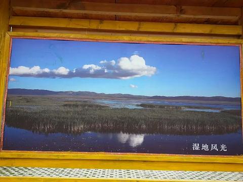 尕海旅游景点攻略图