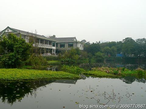 仁威庙旅游景点图片