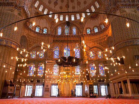 蓝色清真寺旅游景点图片