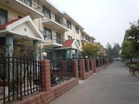 刘庄旅游景点图片