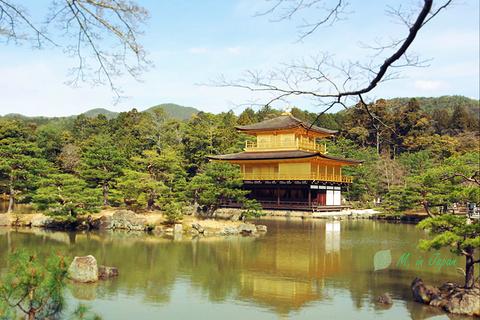 金阁寺旅游景点攻略图