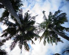 水清沙白——马尔代夫十日游