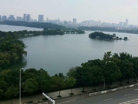 天井湖公园旅游景点图片