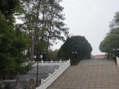 瑞金共和国摇篮景区旅游景点图片