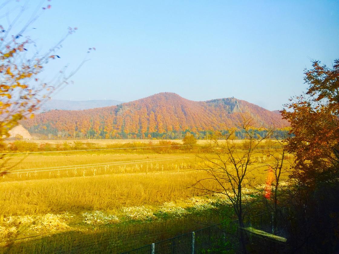 秋天去北方感受秋之美~~
