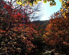 致闺蜜——我们相约在秋天最美的关门山