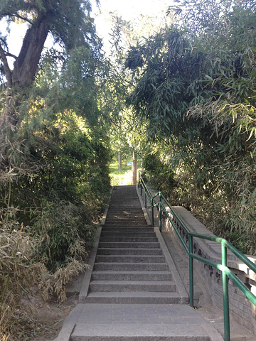 """""""爬上景山顶端,可享受故宫全景,是摄影爱好者的聚集地_景山公园""""的评论图片"""