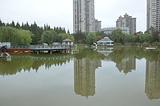 新虹桥中心公园