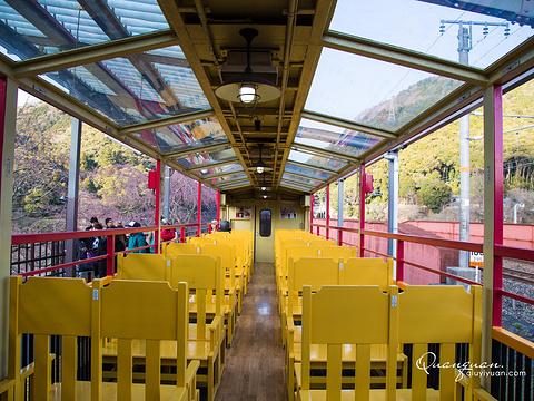 嵯峨野观光小火车旅游景点图片