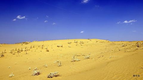 库布齐沙漠的图片