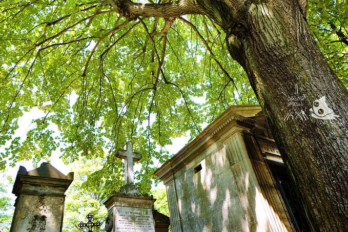拉雪兹公墓图片