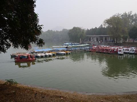 新乡市人民公园旅游景点图片