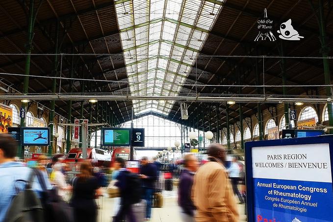 巴黎北站图片