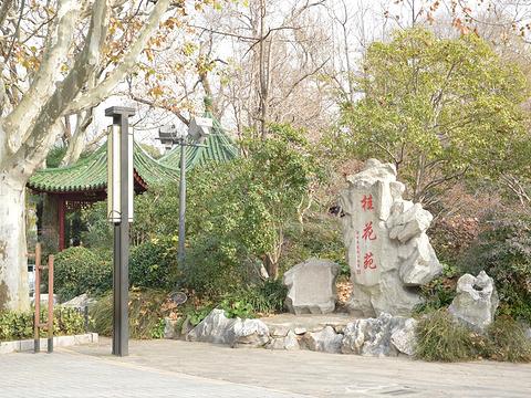 长风公园旅游景点图片