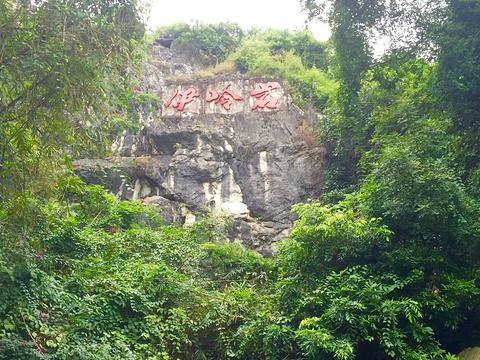 伊岭岩旅游景点图片