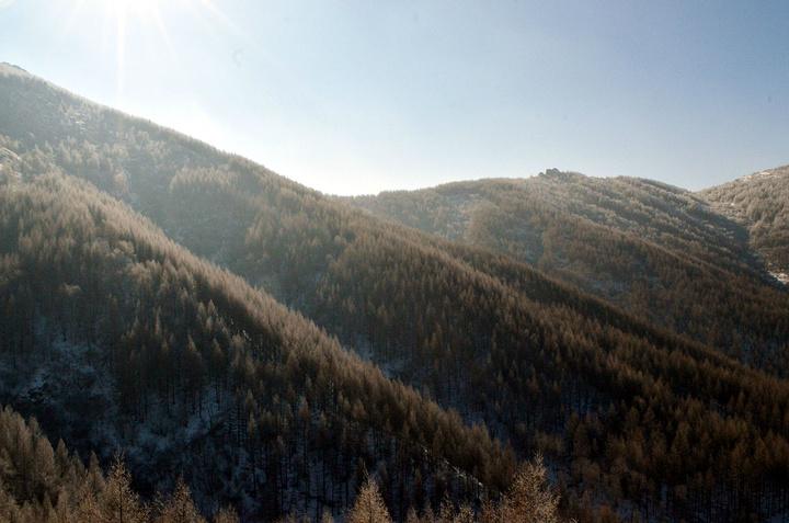 """""""看现在的情形明天应该会天气很好,大雾散去一定会是晴空万里,要大家都做好准备早上6点起床,好好欣..._苏木山森林公园""""的评论图片"""