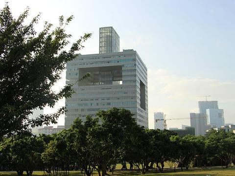 深圳大学旅游景点图片