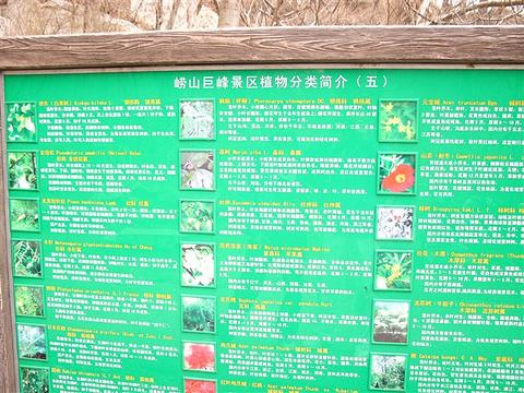 巨峰浏览区旅游景点攻略图