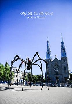 圣母院大教堂旅游景点攻略图