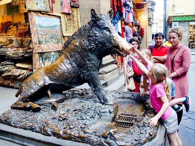 野猪喷泉图片